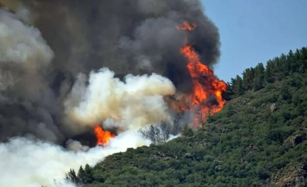 На курорті Мармарис у Туреччині спалахнула лісова пожежа, туристів евакуюють: відео