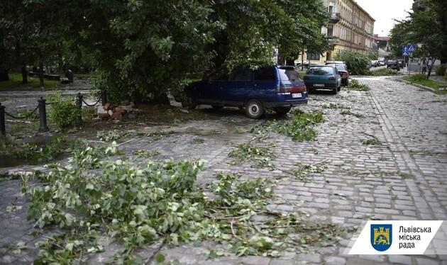 Львов снова пострадал от сильной бури