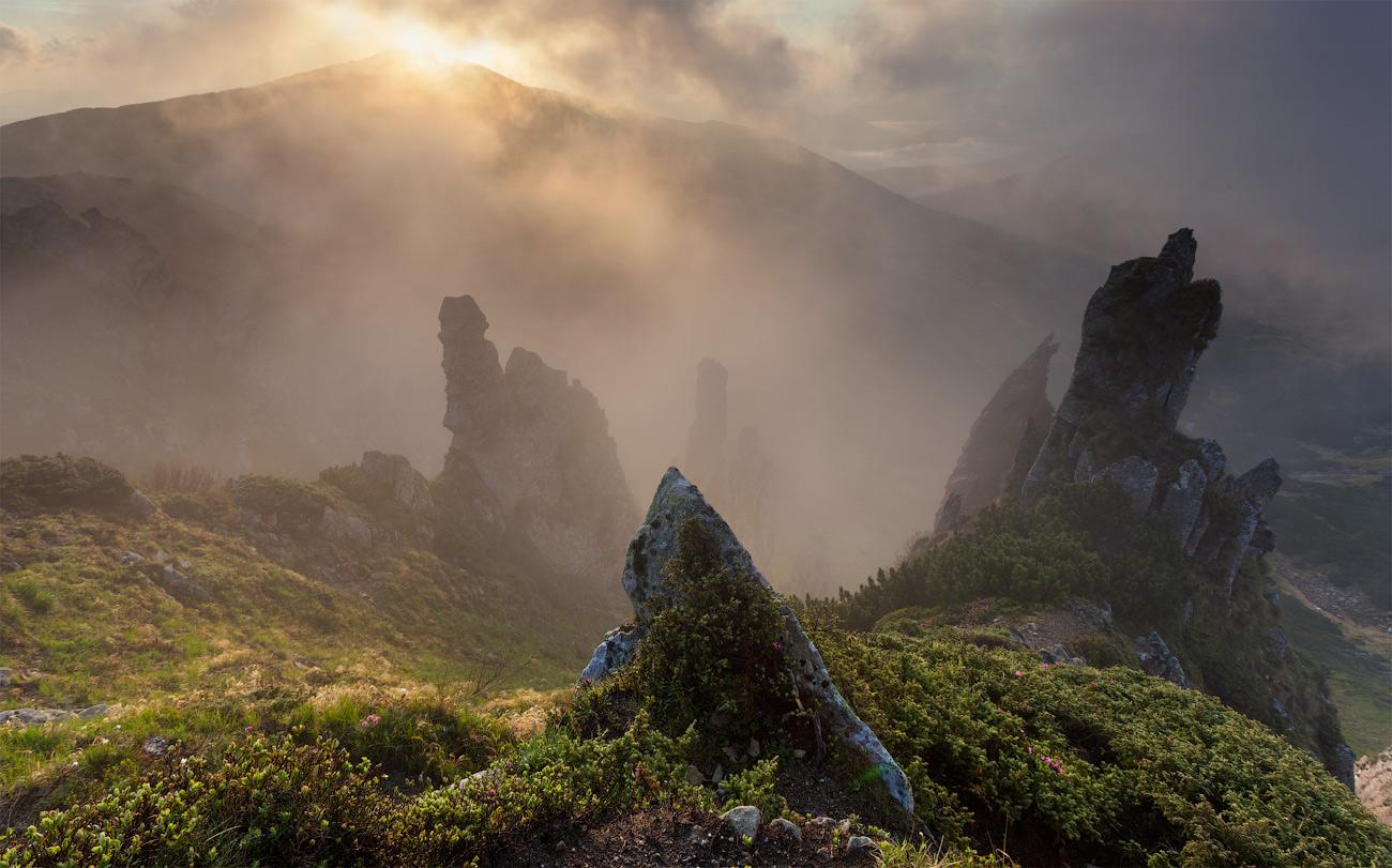 Карпатське високогір`я