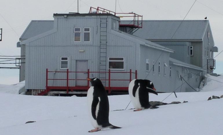 На ремонт єдиної української антарктичної станції направлено 15 млн грн, - МОН - Цензор.НЕТ 6346